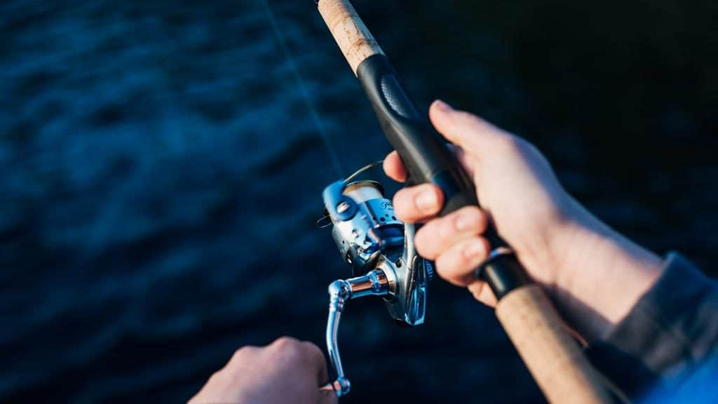 Fishing and how to fish as well as fishing for beginners