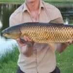 Catch Carp in a Pond held by gentleman